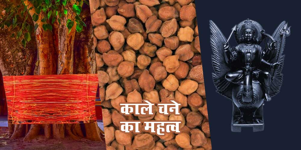 Shani Jayanti Vat Savitri Vrat Kaale Chane Ka Mahatva