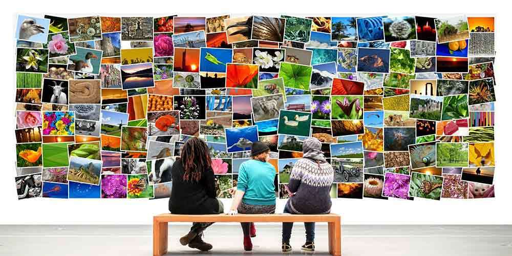 Lucky photos for home according to vastu that will boost positivity