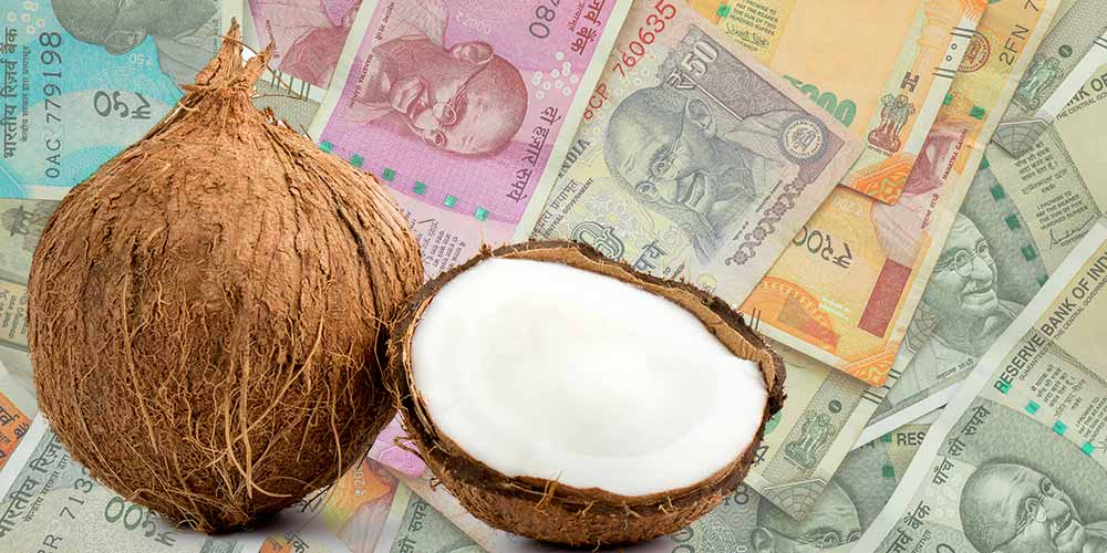 Coconut (nariyal) Upay on Dusshera for Money Problems